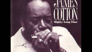 James Cotton - fever