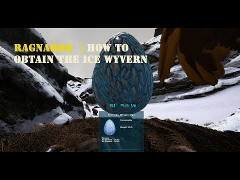 Ark Ragnarok How to Obtain the Ice Wyvern eggs and oil : playark