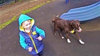 Ребенок с собакой на детской площадке, Das Kind mit dem Hund auf dem Spielplatz