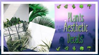 Roblox Bloxburg // Aesthetic Plants Decal Id's