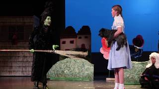 CSTC Wizard of Oz Preview