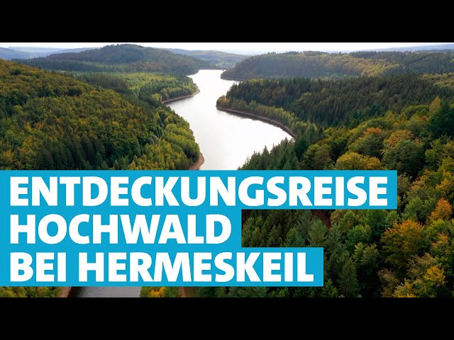Der Hochwald rund um Hermeskeil: Glühende Heimatliebe, Heubrot und Hochlandrinder