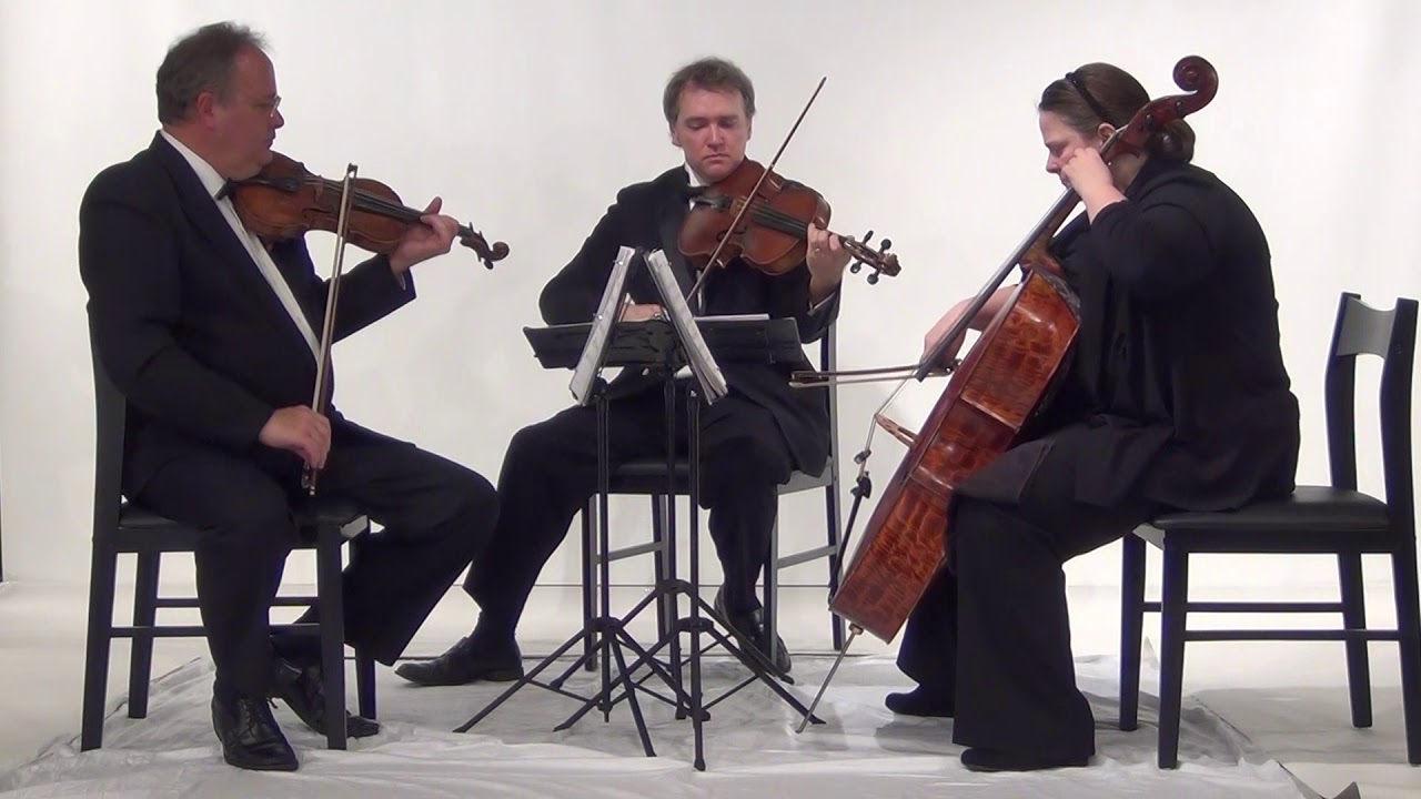 Elegant Ensembles - String quartets in Raleigh, Charlotte