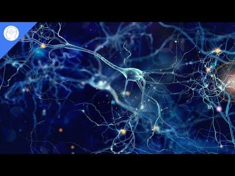 Augmenter la puissance du cerveau, améliorer l'intelligence, améliorer le QI, le rythme binaural