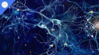 Download Increase Brain Power, Enhance Intelligence, IQ to improve, Binaural Beats, Improve Memory Mp3 and Videos