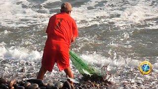 ☑️ Así se PESCA con ATARRAYA en el MAR - Cast net fishing net