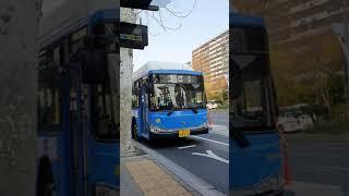 301번대우경제형저상신차잠실역(롯데월드)버스정류장발차영…