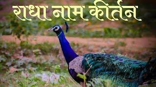 राधा नाम कीर्तन | Radha Naam Kirtan