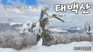 날씨와 눈꽃 로또 맞은 태백산 등산 (Mt.Taebae…
