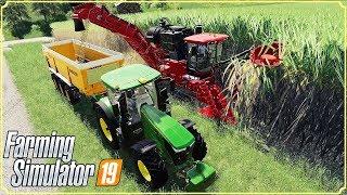 FARMING SIMULATOR 19 #46 - FINALMENTE LE CANNE DA ZUCCHERO - GAMEPLAY ITA
