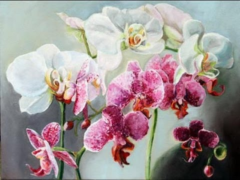 Pink and White Orchids Painting Time Lapse Kitty Moore