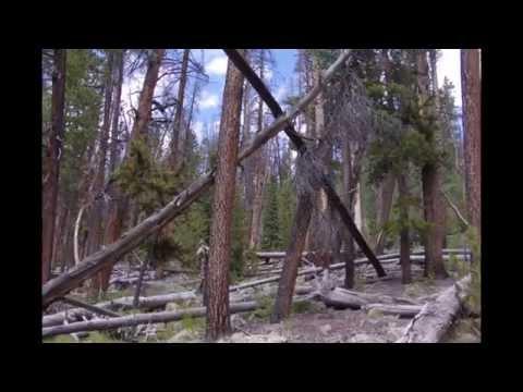 Hobbs Bigfoot Expedition Yellowstone Canyon