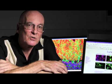 EnCor Biotechnology's Gerry Shaw: Faces of Technology