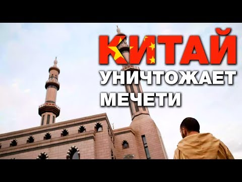 Более 30 мечетей