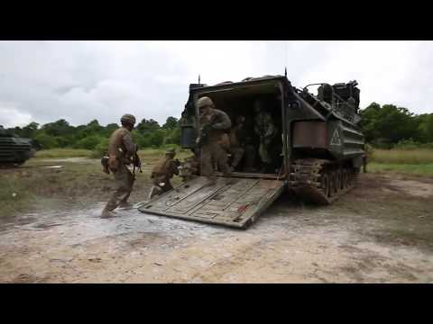 Royal Brunei Land Forces conduct a platoon attack range during exercise Brunei AAV B-roll BRUNEI