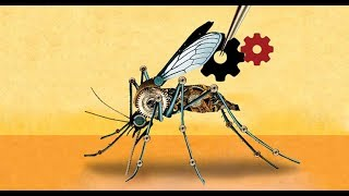 DARPA Experimenting with Gene Drive Technology Able To Exterminate Humanity in a Heartbeat