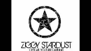 Duck Sauce - Barbara Streisand (Ziggy's groovy remix)