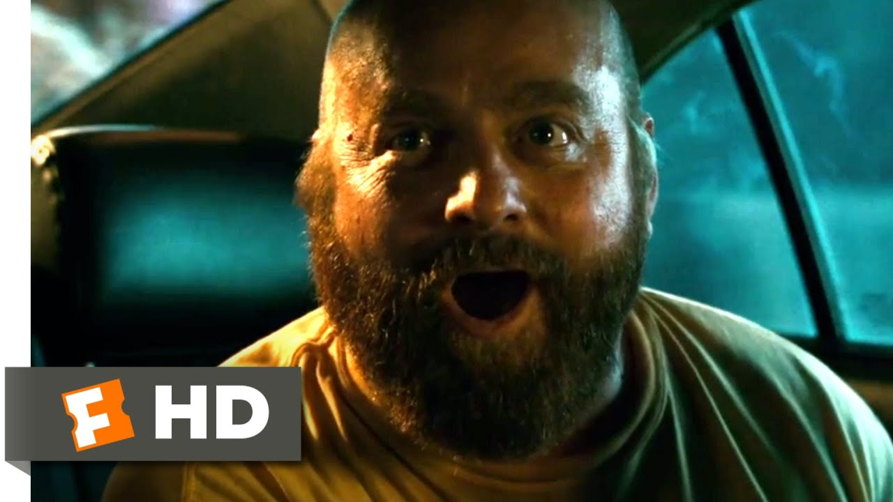 Download The Hangover Part II (2011) - They Shot the Monkey! Scene (5/6)   Movieclips