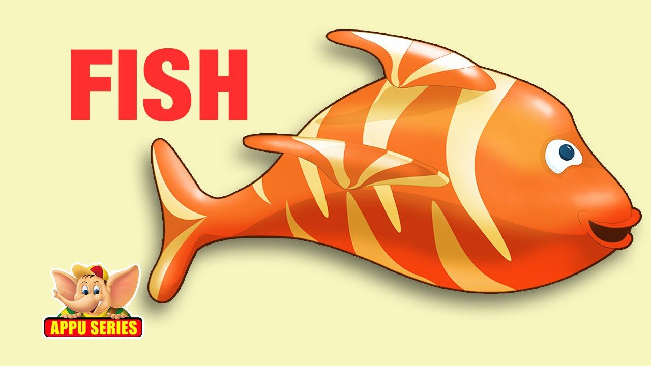 few lines on my pet fish