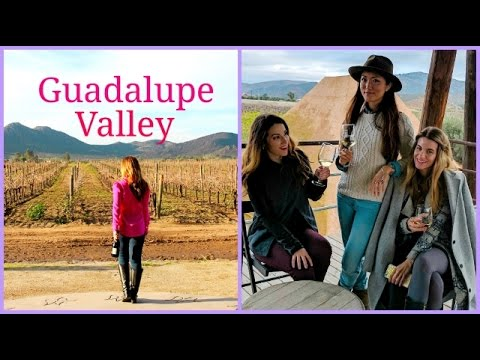 Valle de Guadalupe: My Visit to Mexico's Wine Country and Bruma Casa Ocho Hotel Tour
