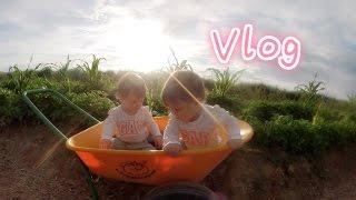 MelodyBlur Vlog-宝宝们周末的一天 Twins' Weekend