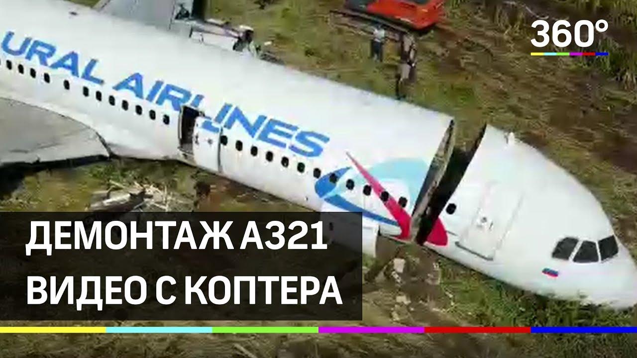 Начался демонтаж салона и кабины Airbus A321 на кукурузном поле