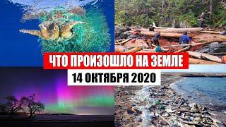 Катаклизмы за день 14 октября 2020 | месть природы,изменение климата,событие дня, в мире,боль земли