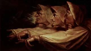 Die Streuner - Die Hexe