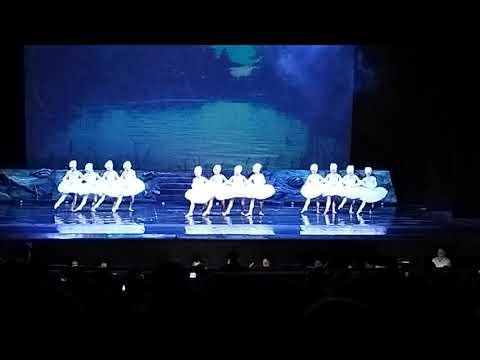 Танец Маленьких Лебедей на Воде! Харьковский Театр Оперы и Балета