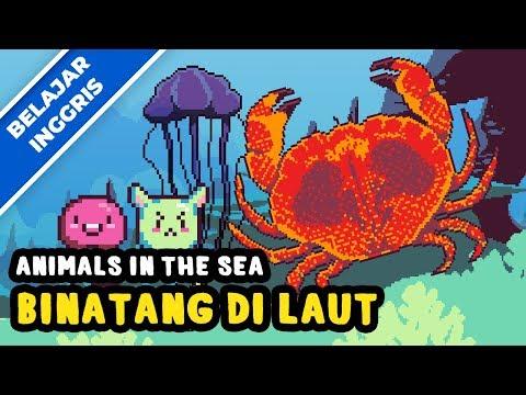 Belajar Bahasa Inggris | Binatang Di Laut | Lagu Anak Terbaru 2018 | Bibitsku