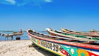 Сенегал: ралли Дакар, Великая зелёная стена…Интересные факты!