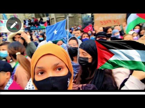 Download Bananbaxi ugu Wena oo lagu tagerayo palestine 🇵🇸 biggest protest plastine belgium 🇧🇪