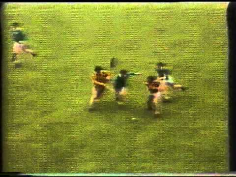 All Ireland Hurling Final 1973 (8 of 8)
