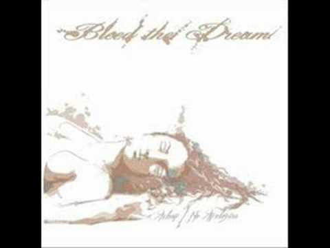 Bleed the Dream -  Broken Wings (acoustic Version)