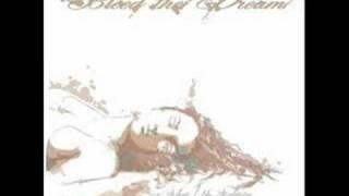 Bleed the Dream -  Broken Wings (acoustic Version)