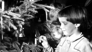Gert Timmerman - O denneboom ( 1968 )