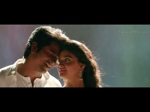 Remo lovely lines...MEESA BEAUTY