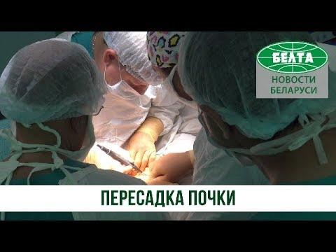 Как проходит пересадка почки