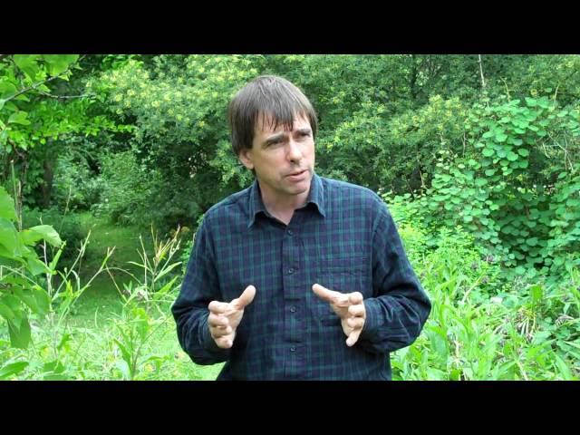 Martin Crawford's Forest Garden Part 1