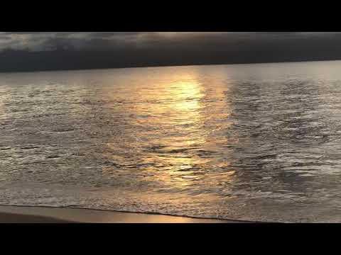 Maui Zen