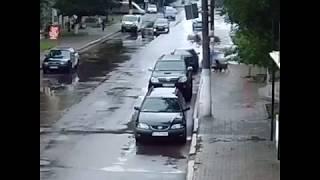 У Нововолинську на жінку напала зграя собак