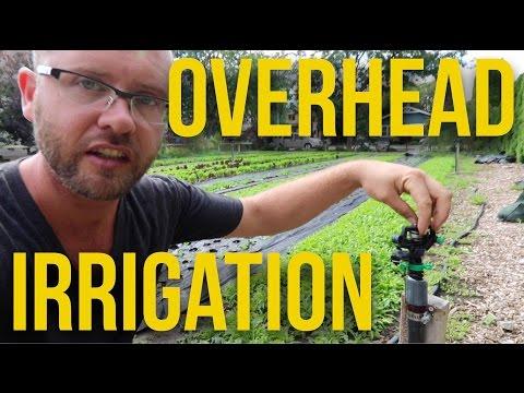 IN FOCUS - Overhead Irrigation