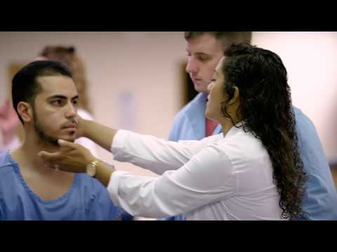 Your Pursuit: New York Chiropractic College