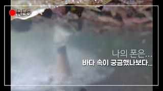 최근잡은곳 포인트가는법 or 폰잠수시키기~ (칠천도 무…