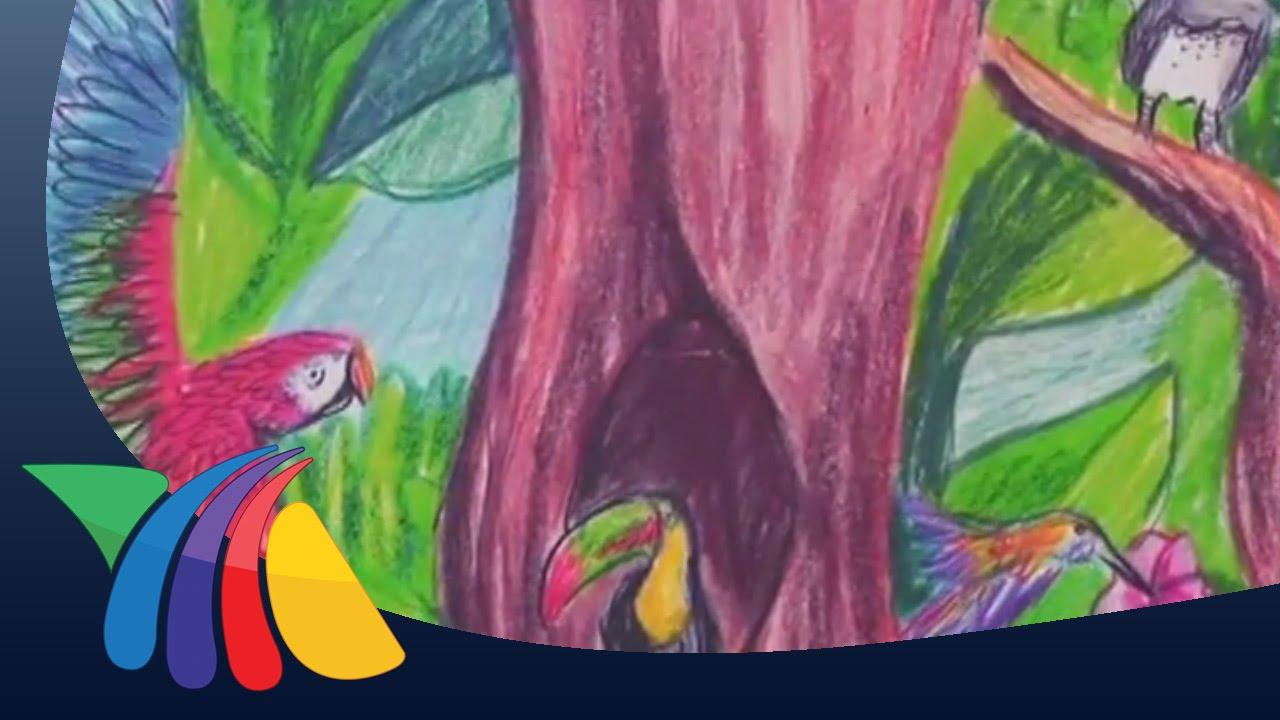 Inauguran Exposición Que Viva La Selva Lacandona Noticias Youtube