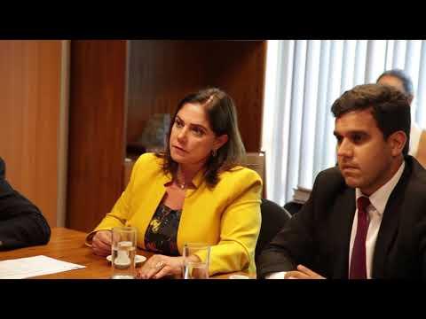 Soraya Santos defende participação do Rio de Janeiro na repartição dos royalties da mineração