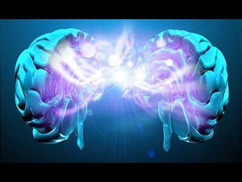 como-funciona-o-cérebro-humano
