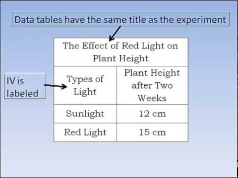 Scientific Method Graphs And Data Tables Youtube