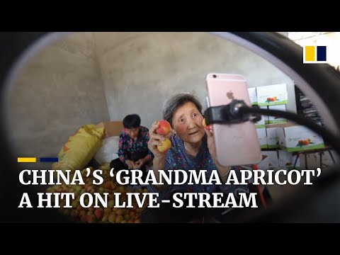 'Grandma Apricot' finds online fame as she sells fruit on live streams from rural China