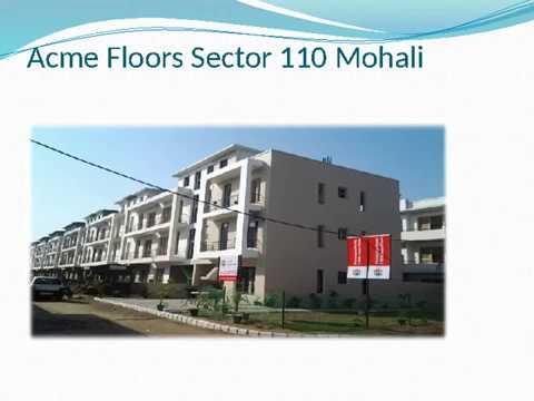 Acme Floors Sector 110 Mohali